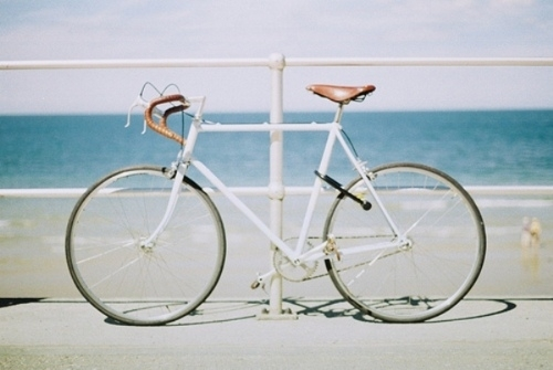 versilia-bici