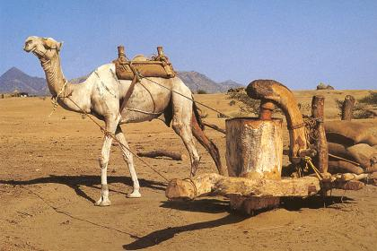 eritrea-travel-3