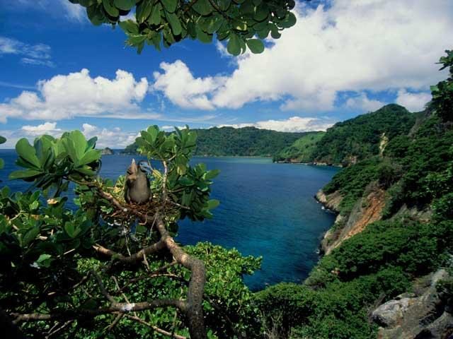 costa-rica-isola-cocco